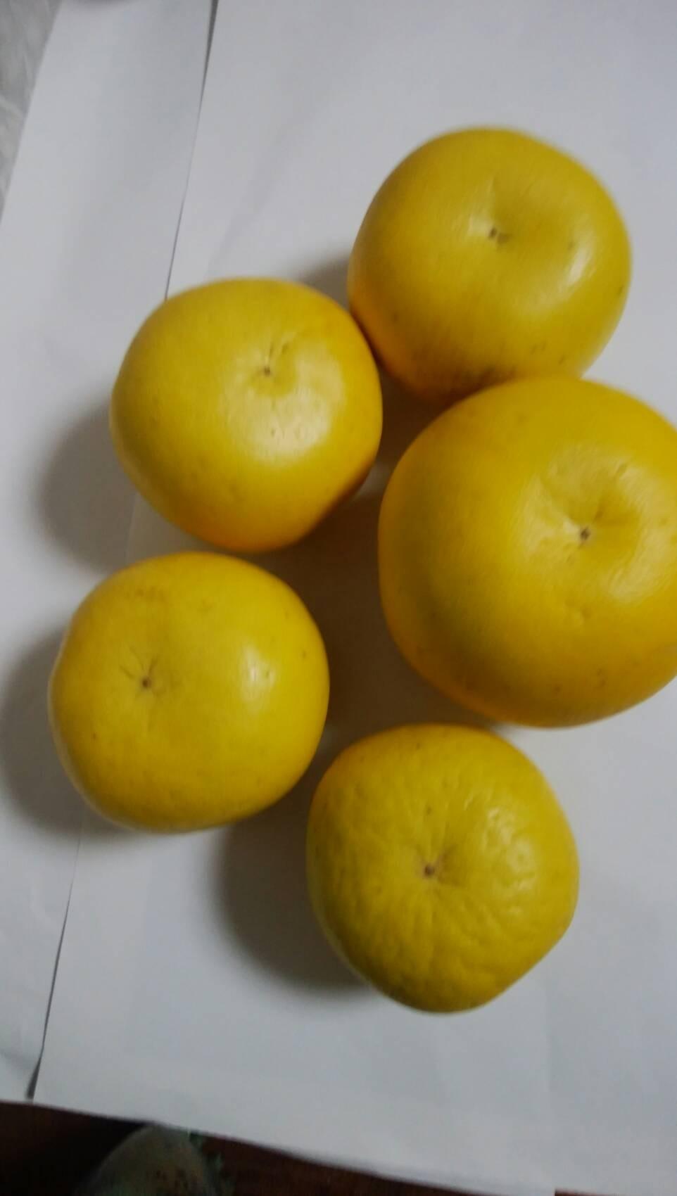 晩白柚(バンペイユ)4kg