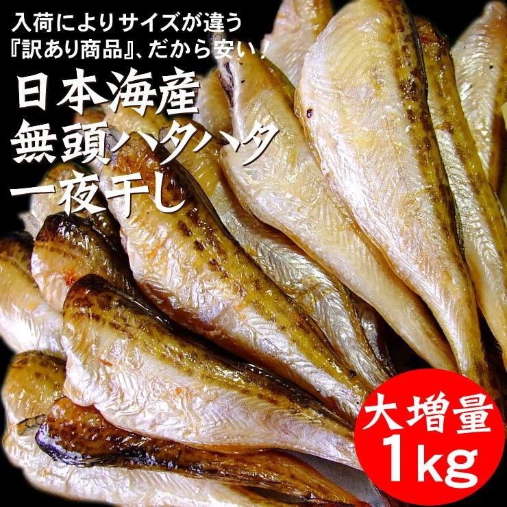 【送料無料】干しハタハタ(無頭)1kg【冷凍】【ハタハタ一夜干し】日本海産