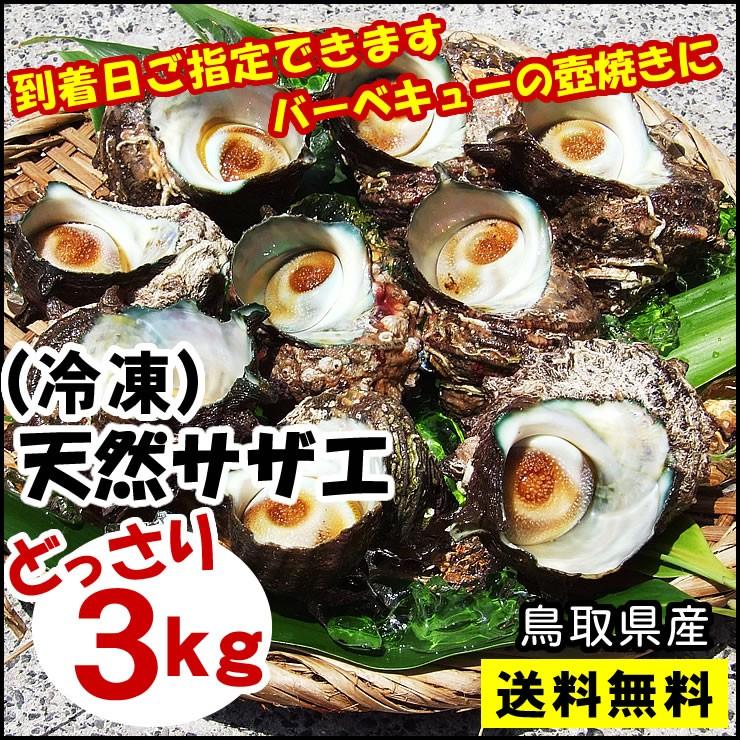 【送料無料】天然サザエ(鳥取県産)[冷凍] 3kg(大中小サイズ混じり)【お刺身・バーベキュー・壺焼きに】