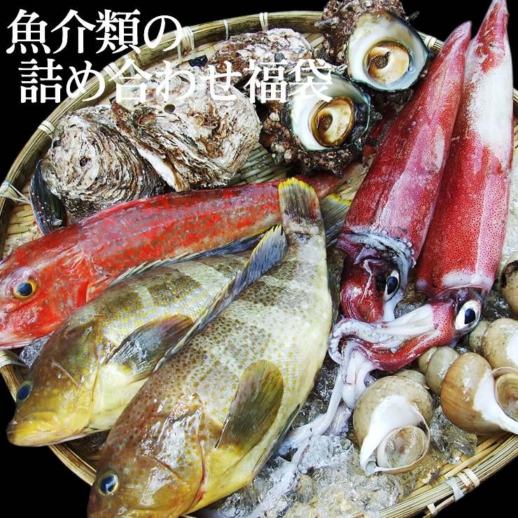 【送料無料】魚介類の詰め合わせ3980円セット福袋(魚介類2~4品程度入) [冷蔵]