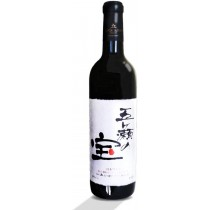 日本赤ワイン 五ヶ瀬の宝