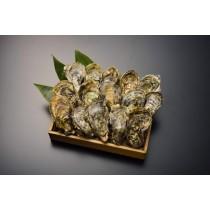 北海道 厚岸産 生牡蠣 Lサイズ×15個