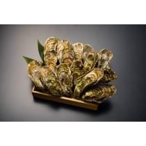 北海道 仙鳳趾産 生牡蠣 Mサイズ 15個セット